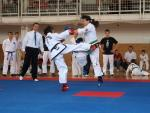 taekwondo2011042