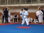 taekwondo2011043