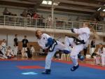 taekwondo2011046