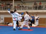 taekwondo2011048