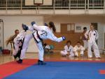 taekwondo2011054