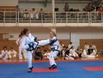 taekwondo2011056