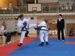 taekwondo2011057