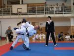 taekwondo2011058