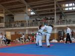 taekwondo2011060