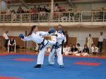 taekwondo2011066