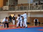 taekwondo2011069
