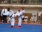 taekwondo2011072