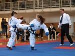 taekwondo2011073