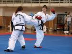 taekwondo2011074
