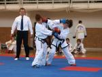 taekwondo2011075
