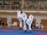 taekwondo2011077