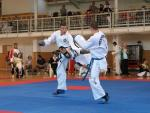 taekwondo2011079