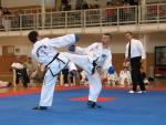 taekwondo2011085