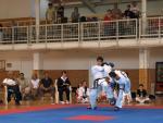 taekwondo2011086