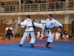 taekwondo2011088