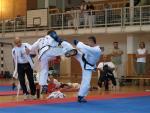 taekwondo2011089