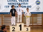 taekwondo2011095