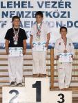 taekwondo2011097