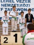 taekwondo2011098