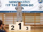 taekwondo2011099