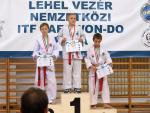 taekwondo2011100