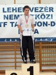 taekwondo2011102