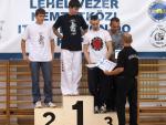 taekwondo2011110