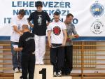 taekwondo2011111