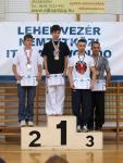 taekwondo2011112