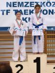 taekwondo2011113