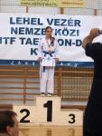 taekwondo2011116