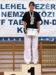 taekwondo2011120