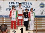 taekwondo2011122