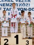 taekwondo2011123