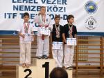 taekwondo2011124
