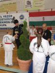 taekwondo2011143
