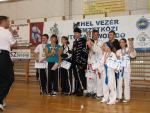 taekwondo2011145