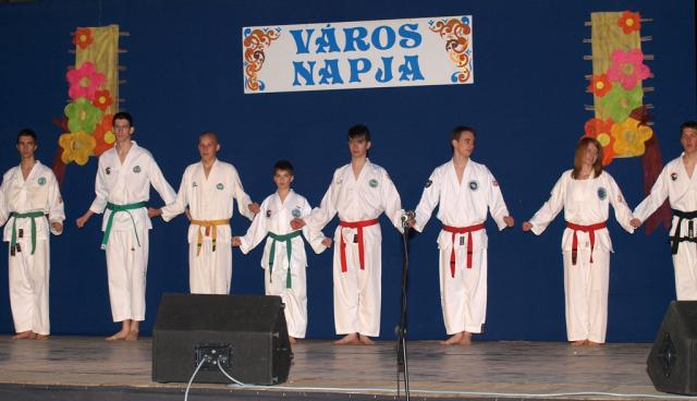 vnmc2010087